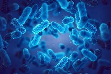 Précon Quality Services - Nieuw: online training Microbiologie en het beheersen van besmetting en bederf