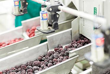 Précon Quality Services - Trainingskalender voedingsindustrie 2022