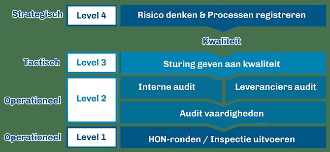 Voorbeeld leerlijn auditvaardigheden