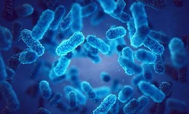 Microbiologie en het beheersen van besmetting en bederf